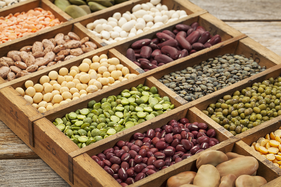 Different kinds of beans